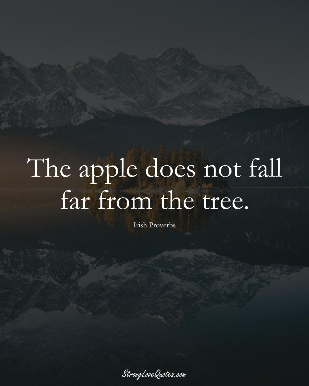 The apple does not fall far from the tree. (Irish Sayings);  #EuropeanSayings