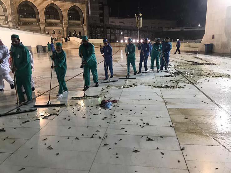 """بالفيديو- جهود لاحتواء هجوم من """"صراصير الليل"""" على الحرم المكي"""