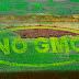 Γενετικές μεταλλάξεις φυτών σκοτώνουν ανθρώπους