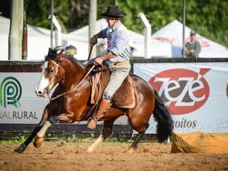 RURAL: Participação lavrense nos eventos do Cavalo Crioulo na Expointer 2020