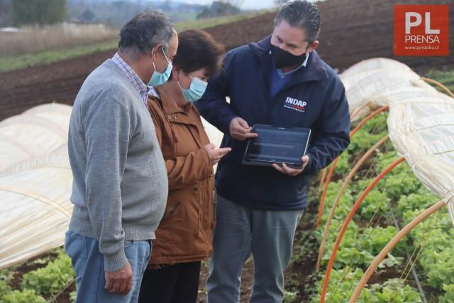 """""""Mercados Campesinos"""": vitrina digital para los productores de la Región"""