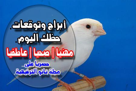 أبراج اليوم الأحد 8-3-2020 Abraj   حظك اليوم الأحد 8/3/2020   توقعات الأبراج الأحد 8 أذار   الحظ 8 مارس 2020