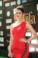 Meenakshi Dixit in Red One Shoulder Red Zipped up gown at IIFA Utsavam Award 52.JPG