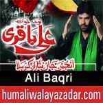 http://www.humaliwalayazadar.com/2016/10/ali-baqri-nohay-2017.html