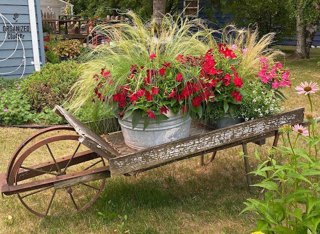 Foto de um carrinho de mão velho com tanques de roupa suja de Nicotiana