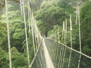lugares para visitar en malasia
