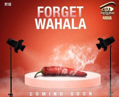 "See The Names Shortlisted For Bbnaija 2019 ""Forget Wahala"" Housemates"