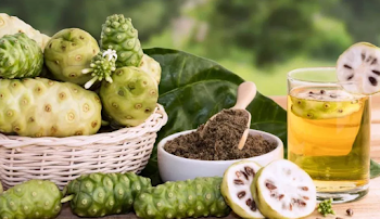 Noni Juice may reduce cellular damage from tobacco smoke