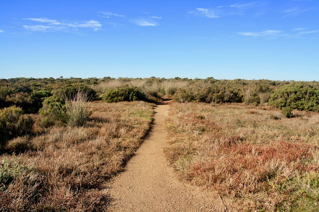 Warringine Wetlands, Hastings narrow dirt track