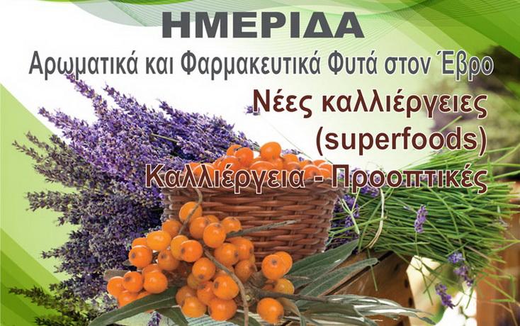 Ημερίδα στο Διδυμότειχο για την καλλιέργεια αρωματικών & φαρμακευτικών φυτών