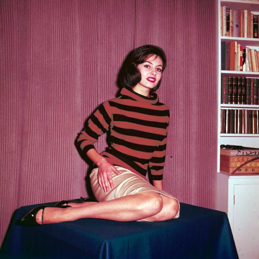 Мишель Мерсье: Фото Как Выглядела Актриса Сыгравшая Анжелику до Сериала