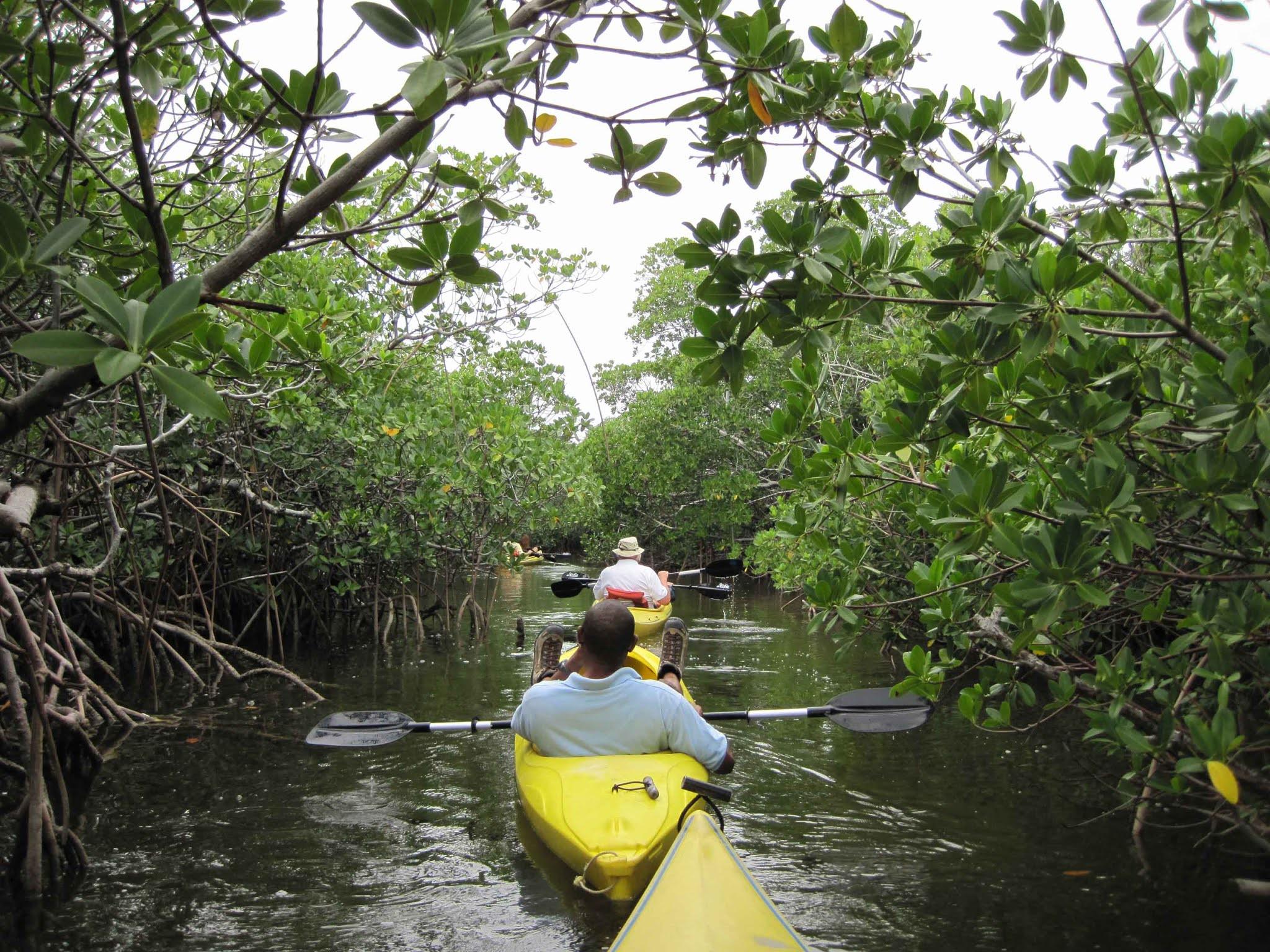 Каяк в Национальном парке Лукаян на Багамах