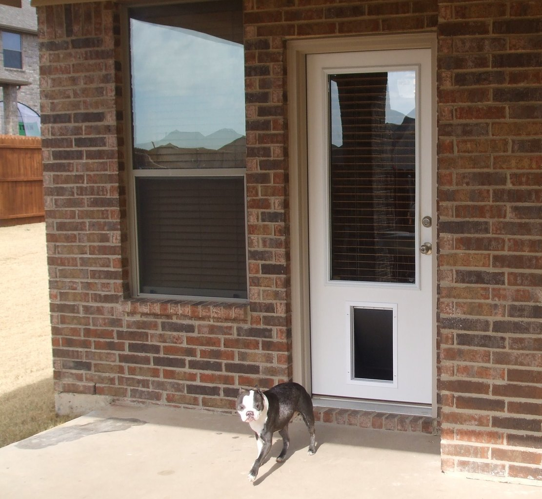 1024 #866B45 Patio Doors With Built In Dog Door At Backyard Koseklut Save  Image Exterior