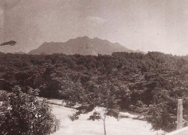 Foto 4 - Do bairro Aeroporto, vendo-se em primeiro plano a vegetação dos mangues existentes em vasta área que vai até o canal de Camburi, junto à Ufes. Ao fundo aparece parte da encosta do Mestre Álvaro. Foto do autor, junho de 1995.
