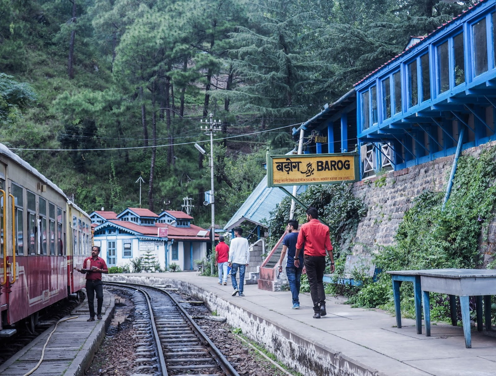 Intia, India, Kalka, Shimla, rautatie, railway, Northern India, Pohjois-Intia, train trip, junamatka, toy train,