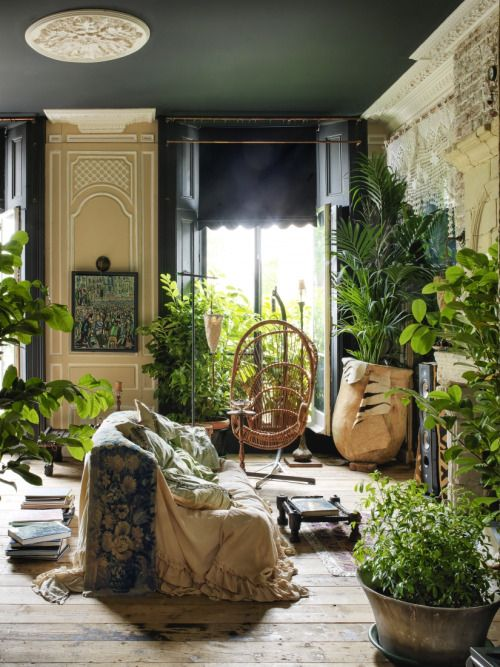 Moon to moon interior jungle for Decoration urban jungle