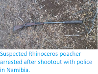 https://sciencythoughts.blogspot.com/2019/09/suspected-rhinoceros-poacher-arrested.html