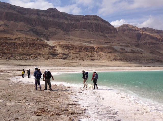 New study solves mystery of salt buildup on bottom of Dead Sea