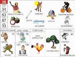 Erek Erek 36 Kode Alam Pohon Sawo