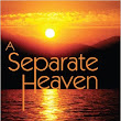 REVIEW + Giveaway - A Separate Heaven by Alex Disanti (Reader Games Included)
