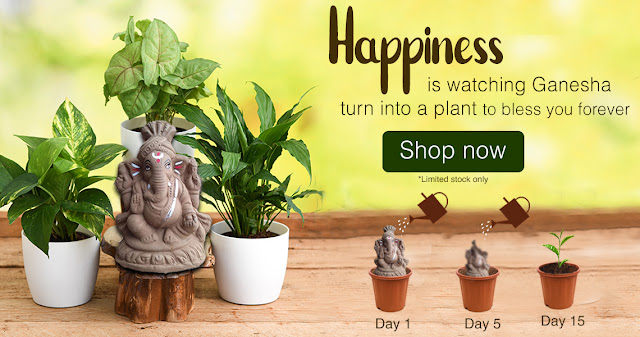 ECO Friendly Celebration with Clean Ganpati - Green Ganpati