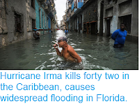 https://sciencythoughts.blogspot.com/2017/09/hurricane-irma-kills-forty-two-in.html