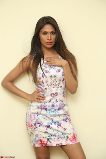 Nishi Ganda stunning cute in Flower Print short dress at Tick Tack Movie Press Meet March 2017 042.JPG