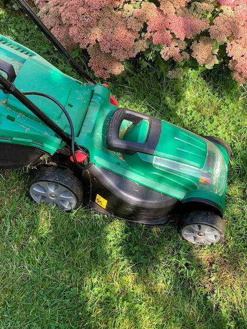 a lawn mower cutting grass