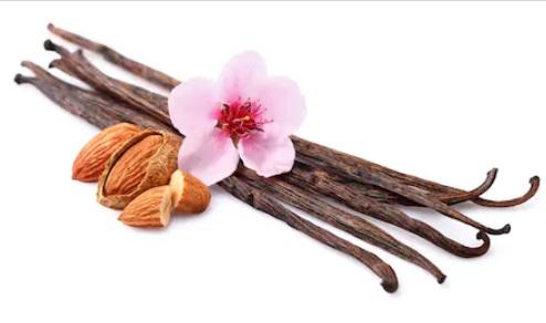 Almond Vanilla Exfoliant