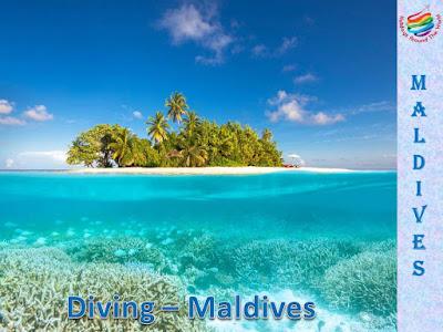 Maldives, The dream trip - Diving