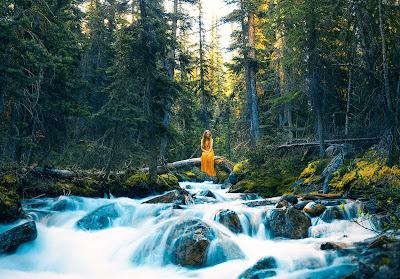 Chica vestida de amarillo sentada en una roca frente al rió en un bosque