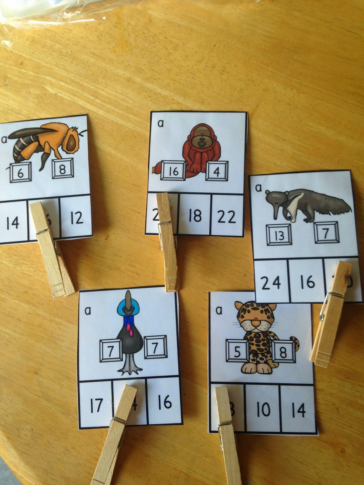 Rainforest Math And A Chance To Win