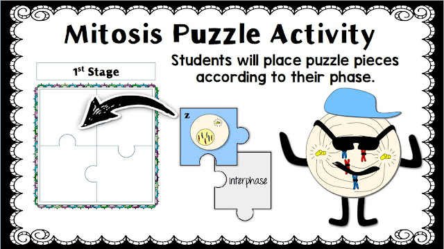 Mitosis Puzzle Activity in Google Slides