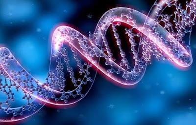Vaccino-covid-danni-genetici