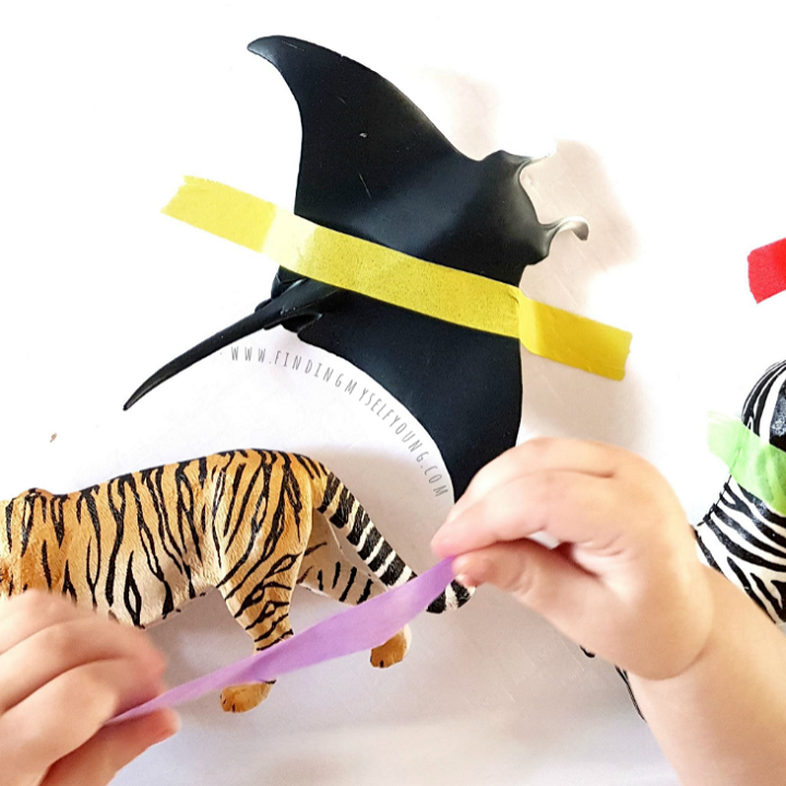 Child peeling washi tape off of tiger and stingray fingurines.