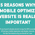 Top 5 Reasons You Need a Responsive Website #infographic