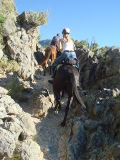 albania, vuoristo, ratsastustmatkailu, riitta reissaa