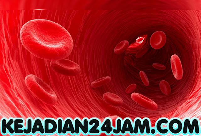 Makanan Yang Bisa Bantu Mengeluarkan Kandungan Racun Dari Darah