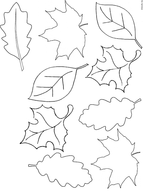 Use this template to bring leaves into learning with your preschool, kindergarten, first grade, second grade, third grade, fourth grade, fifth grade or sixth grade learner.