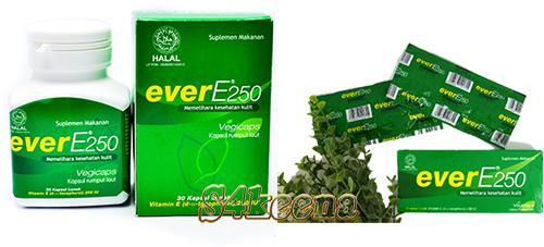 Gambar Harga Ever E250