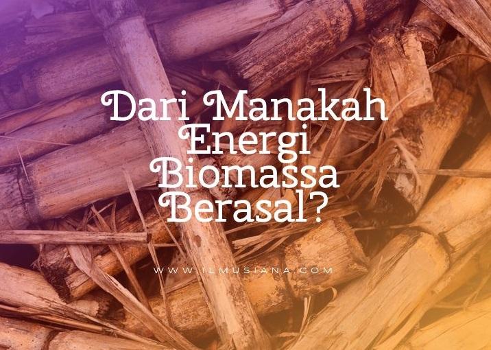 Dari Manakah Energi Biomassa Berasal