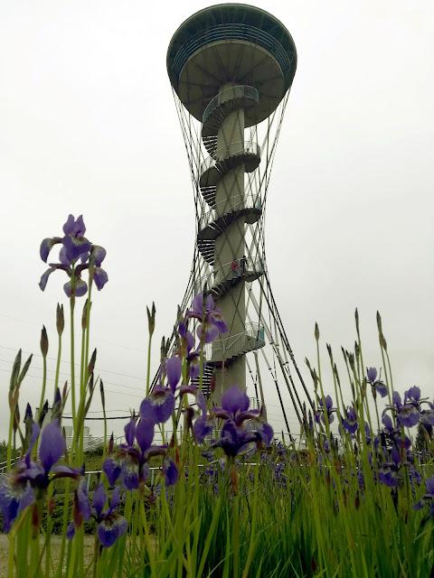 """Wieża widokowa """"Kaszubskie Oko"""""""