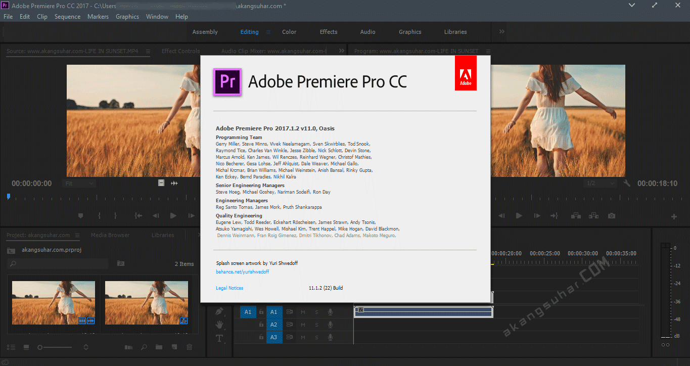 Adobe Premiere Pro CC 2017 Serial Number Free