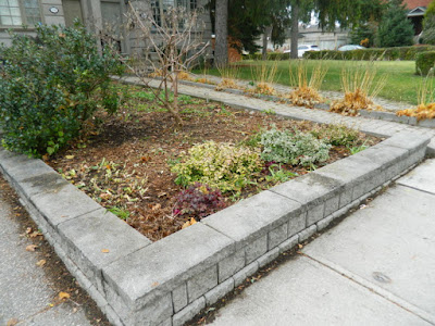 Toronto Bedford Park Fall Cleanup After by Paul Jung Gardening Services Inc.--a Toronto Gardening Company
