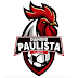 Diamond Paulista: o time de e-Sports do Paulista Futebol Clube