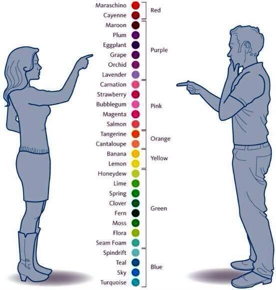 Bagaimana Lelaki dan Wanita Melihat Warna