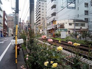 Toden Arakawa Line (都電荒川線 Toden Arakawa-sen)
