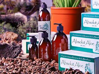 Cuida tu piel con Aloe vera