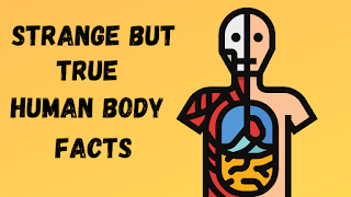 strange but true human body facts