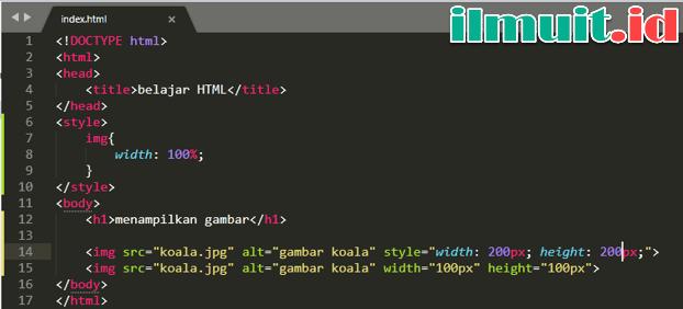 Ukuran gambar pada HTML (width dan height)